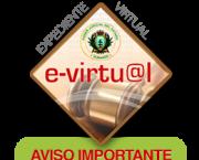 Requisitos para registro de Litigantes al Expediente Virtual